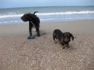Bruno en Floortje